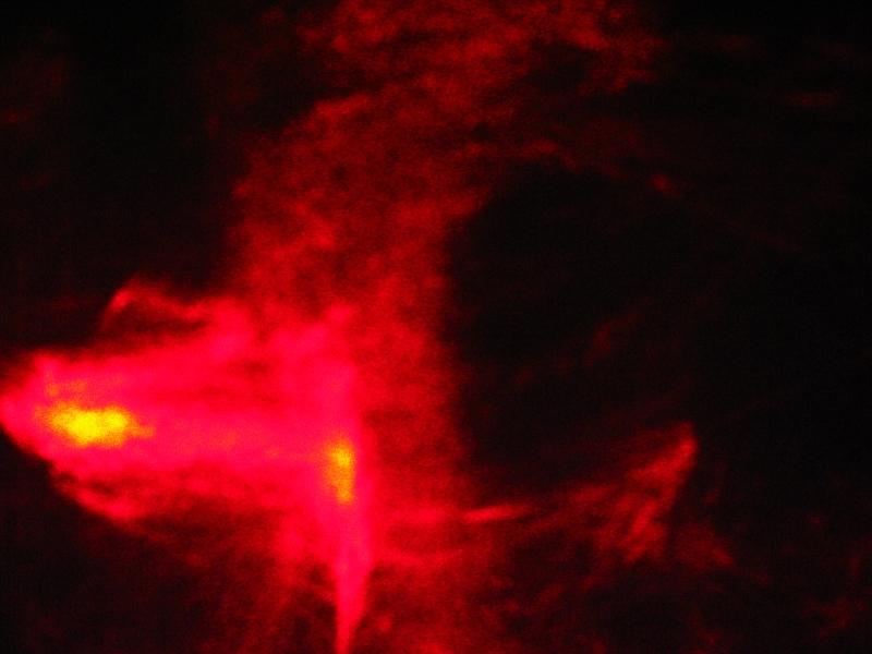 red005.jpg