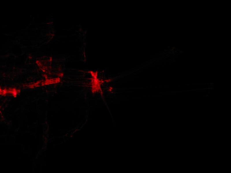 red068.jpg